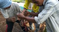 Aceh, BERITA UIN Online– Jelang tahun 2016 berakhir, Kelompok Mahasiswa […]