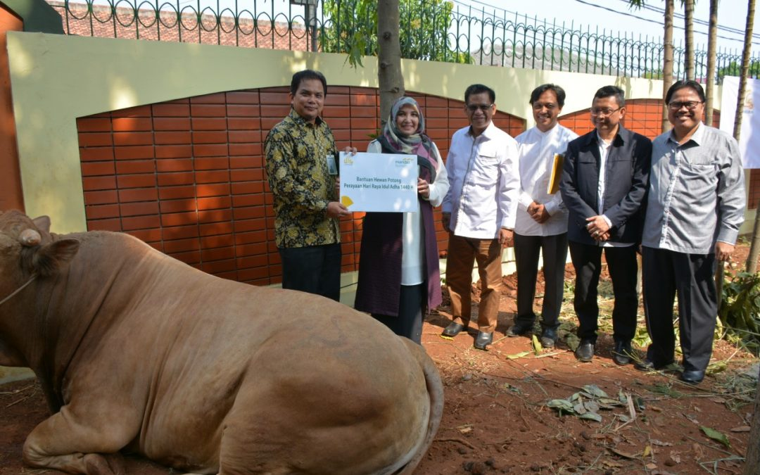 Idul Adha 1440 H, UIN Jakarta Potong 25 Hewan Kurban